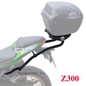 Baga-GIVI-cho-xe-Z300
